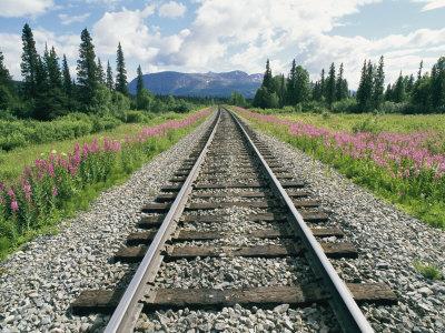 Hasil gambar untuk rel kereta